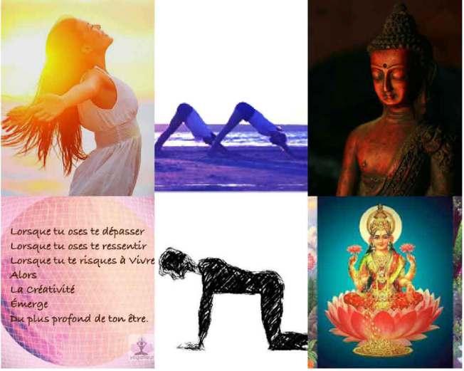 Blog Yogafleur de vie