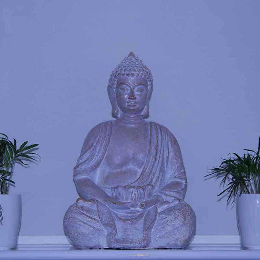 saccès salle yoga Maria Canal